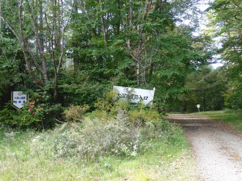 大深山遺跡の入口1