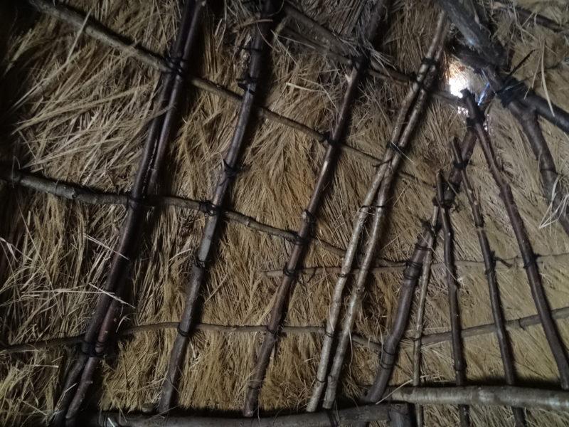 大深山遺跡の竪穴住居4